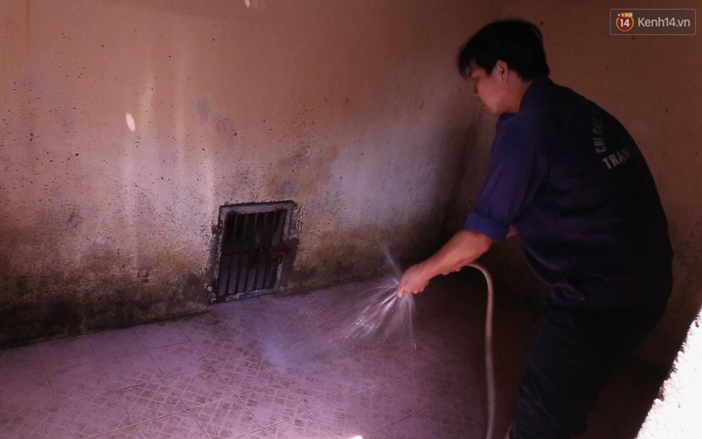 Clip cận cảnh quá trình chăm sóc tại điểm tập kết chó thả rông ở Sài Gòn trong lúc chờ chủ đến nhận - Ảnh 4.