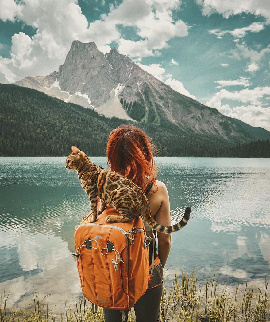 Gặp gỡ chú mèo xinh đẹp cùng cô chủ đi du lịch khắp thế gian - Ảnh 11.
