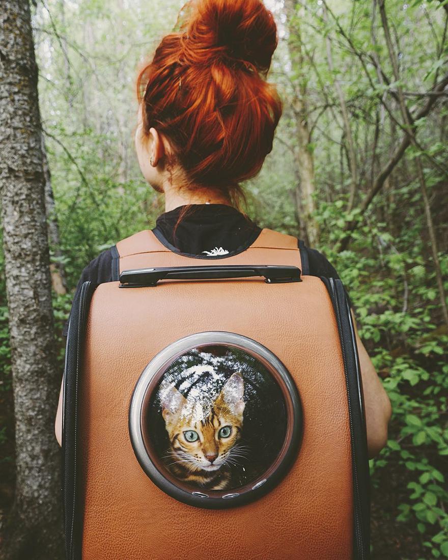 Gặp gỡ chú mèo xinh đẹp cùng cô chủ đi du lịch khắp thế gian - Ảnh 1.