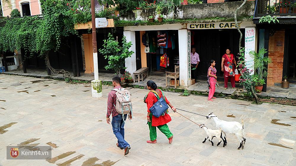 Đến Nepal, nhất định phải ghé qua Bandipur để tận hưởng thiên đường bình yên bên sườn núi - Ảnh 9.