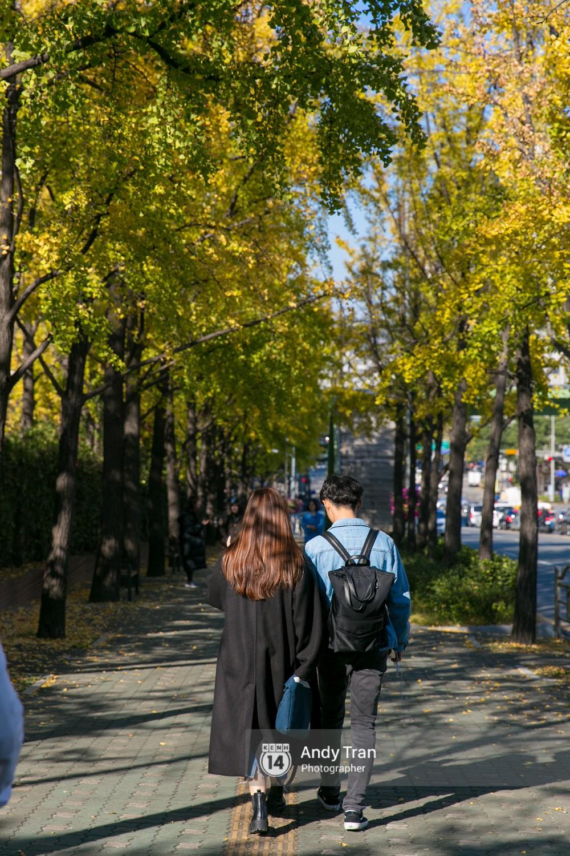Không phải tự nhiên mà người ta nói: Nhất định phải đến Hàn Quốc một lần vào mùa thu lá vàng - Ảnh 20.