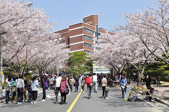 Những điều bạn cần biết khi có dự định du học Hàn Quốc - Ảnh 3.