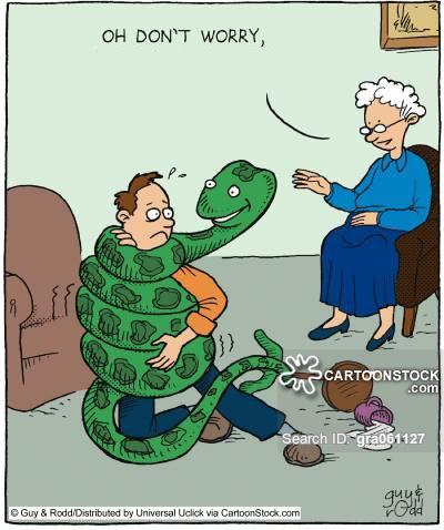 Tin vui cho những người sợ rắn: Chúng ta được tiến hóa để sợ rắn - Ảnh 2.