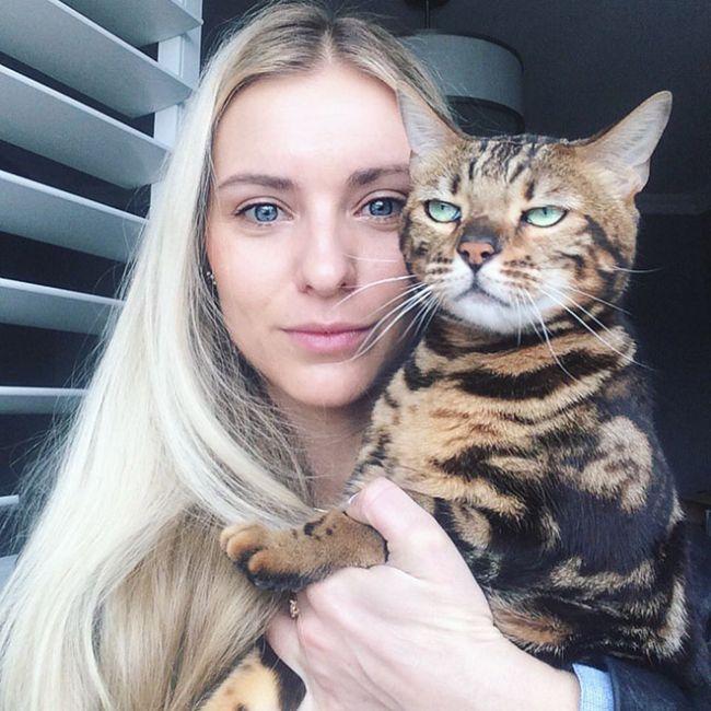 16 chú mèo ghét cay ghét đắng việc selfie cùng chủ nhân - Ảnh 7.