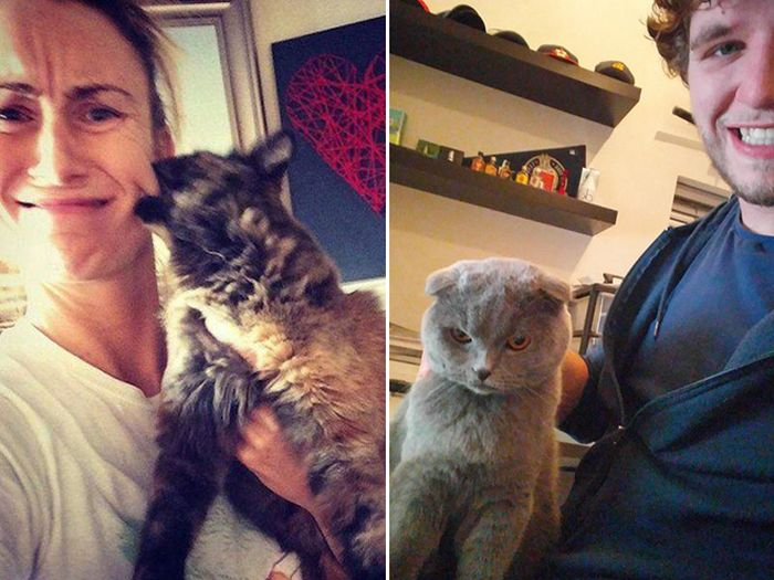 16 chú mèo ghét cay ghét đắng việc selfie cùng chủ nhân - Ảnh 3.