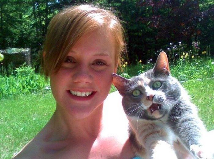 16 chú mèo ghét cay ghét đắng việc selfie cùng chủ nhân - Ảnh 25.