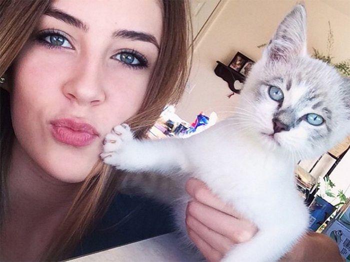 16 chú mèo ghét cay ghét đắng việc selfie cùng chủ nhân - Ảnh 27.