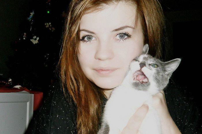16 chú mèo ghét cay ghét đắng việc selfie cùng chủ nhân - Ảnh 23.