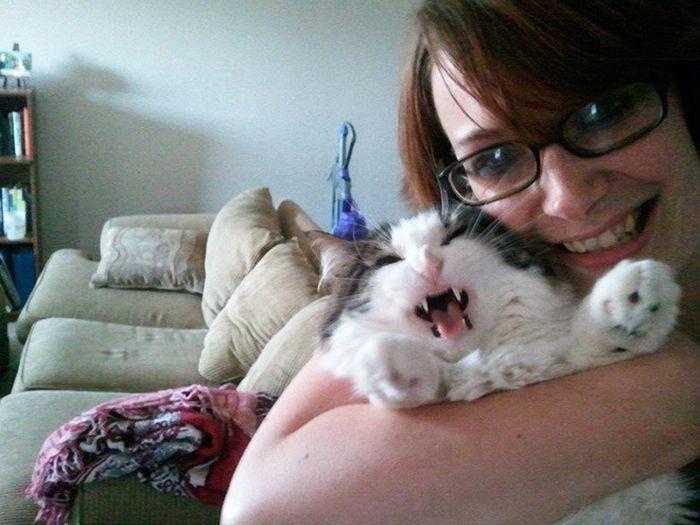 16 chú mèo ghét cay ghét đắng việc selfie cùng chủ nhân - Ảnh 29.