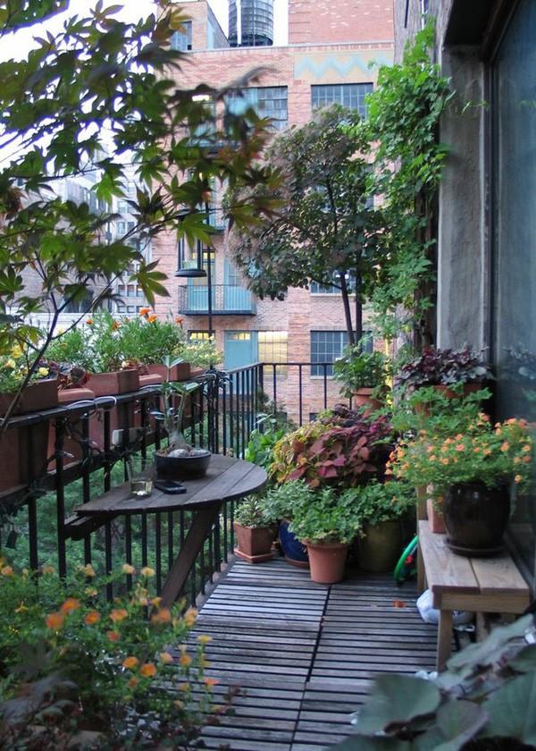 14 ý tưởng đem cây xanh vào nhà không thể cuốn hút hơn - Ảnh 9.