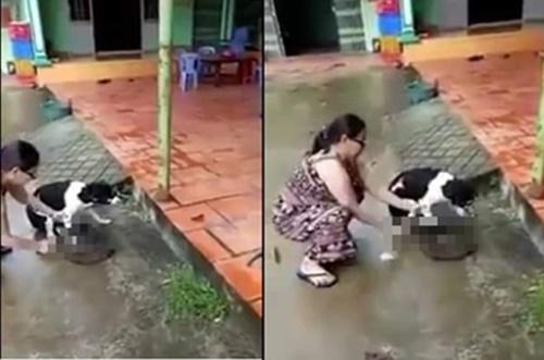 Phẫn nộ clip người phụ nữ thản nhiên chặt chân chú chó còn sống ngay trước hiên nhà - Ảnh 2.
