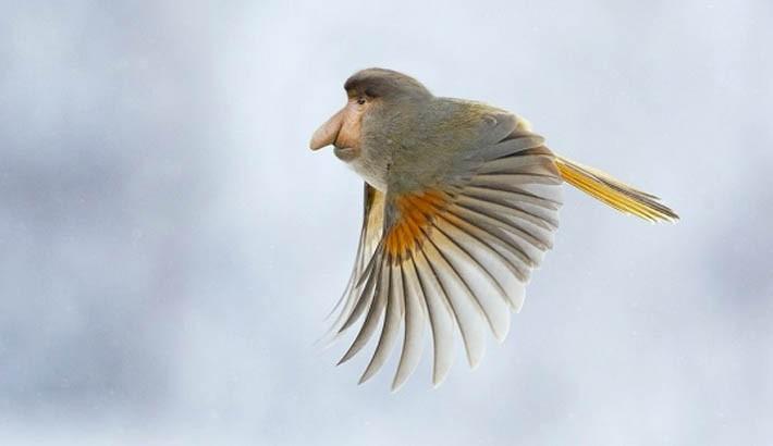 Những loài vật mới chỉ xuất hiện gần đây trong thời đại photoshop - Ảnh 7.
