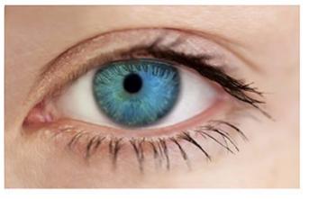 4 màu mắt cho biết điều gì quan trọng nhất trong cuộc sống của bạn - Ảnh 2.