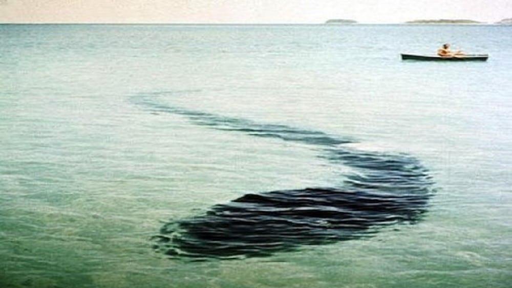 5 quái vật biển trong truyền thuyết gieo rắc cơn ác mộng cho toàn thế giới - Ảnh 4.
