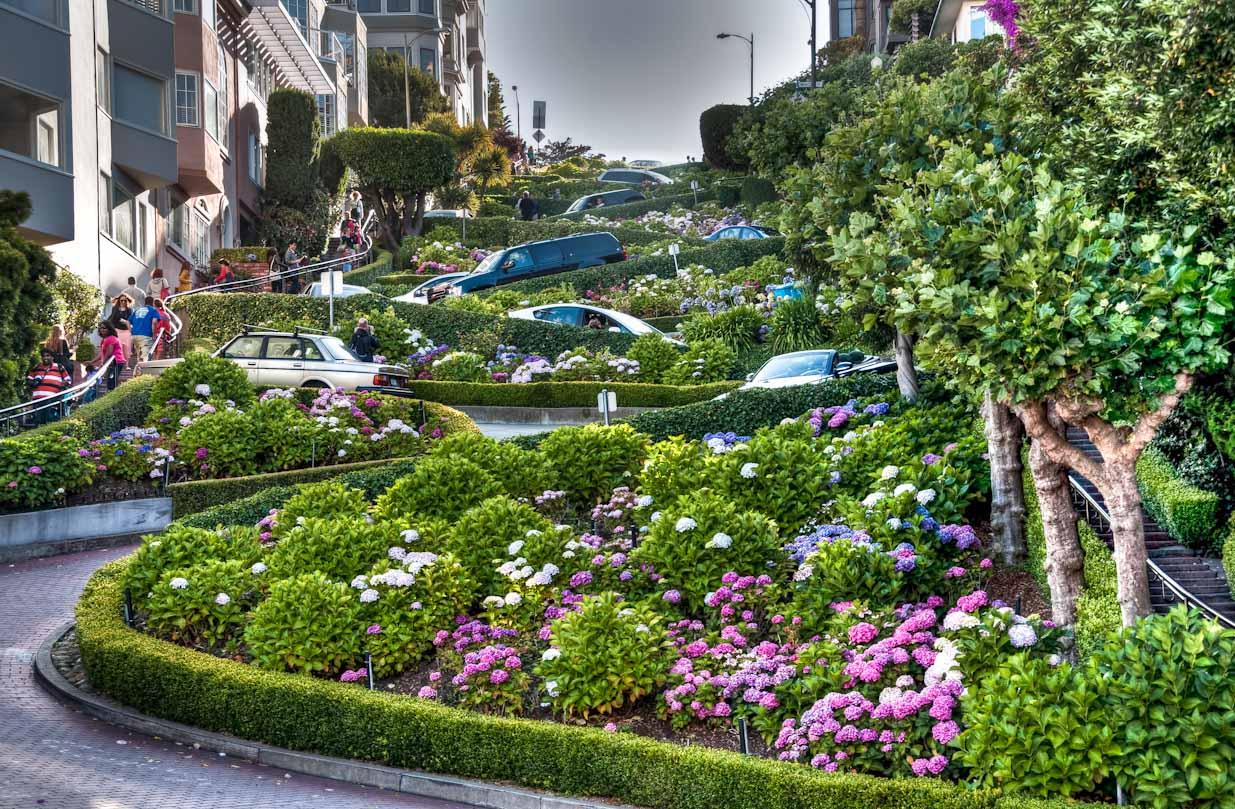 Kết quả hình ảnh cho hình ảnh đường hoa Lombard