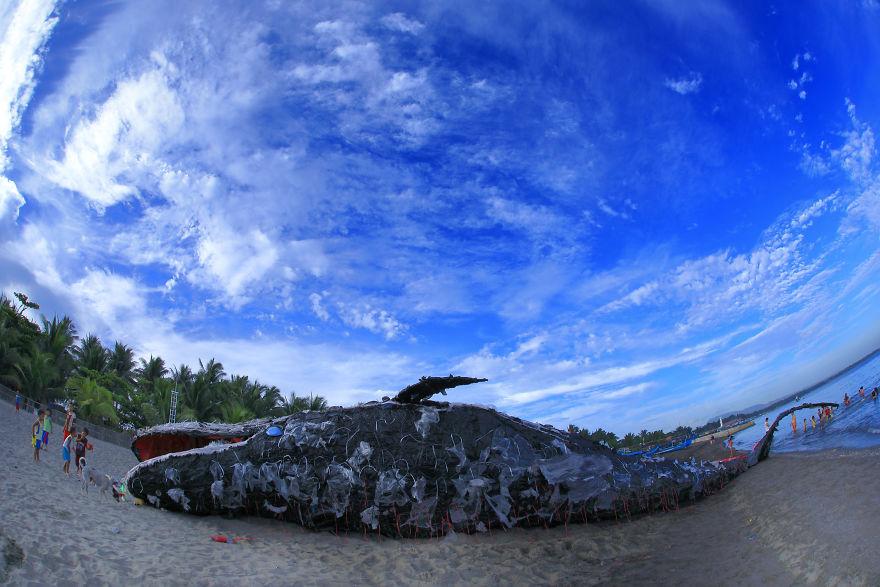 Cá voi khổng lồ nằm chết bên bãi biển, ai cũng sốc khi phát hiện ra thứ bên trong miệng nó - Ảnh 7.
