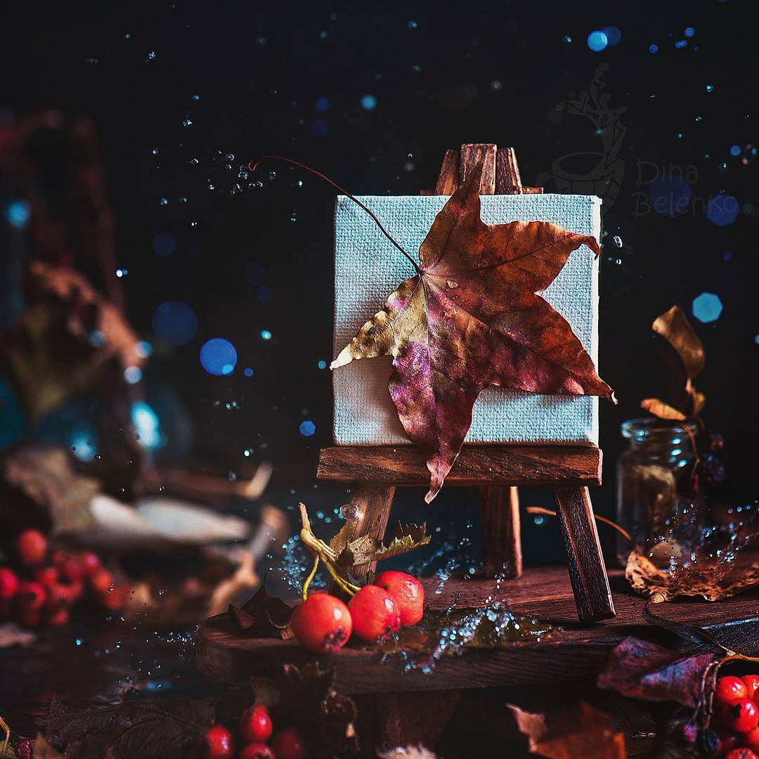 Bộ ảnh tĩnh vật mùa thu tuyệt đẹp dưới ống kính của nữ nhiếp ảnh gia người Nga - Ảnh 5.