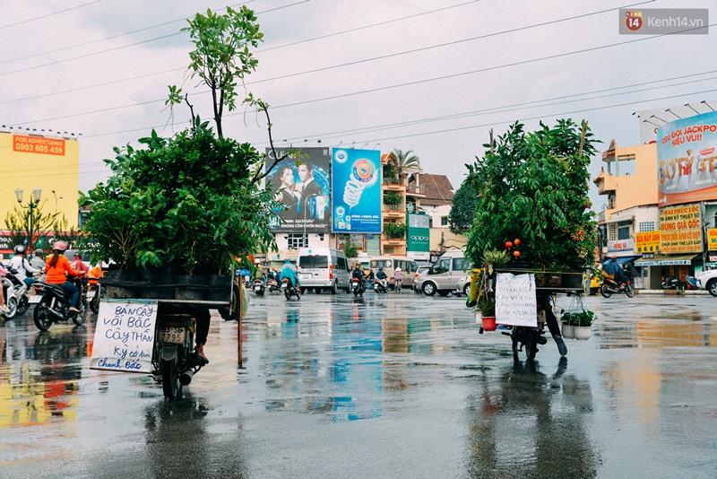 Trên đường phố Sài Gòn, có những người hàng chục năm chở theo một chợ xanh sau yên xe máy - Ảnh 4.