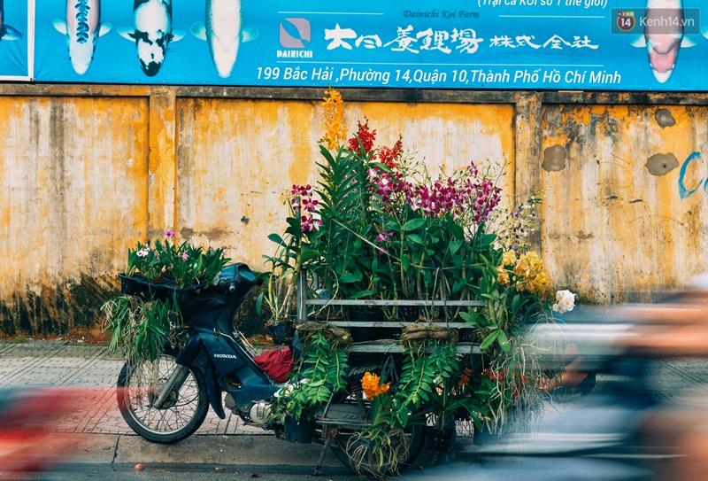 Trên đường phố Sài Gòn, có những người hàng chục năm chở theo một chợ xanh sau yên xe máy - Ảnh 6.
