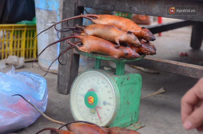Ở Hà Nội có một ngôi làng mà phụ nữ và trẻ con mê thịt chuột hơn cả thịt lợn, thịt gà - Ảnh 9.