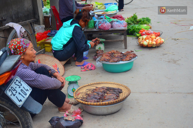 Ở Hà Nội có một ngôi làng mà phụ nữ và trẻ con mê thịt chuột hơn cả thịt lợn, thịt gà - Ảnh 7.