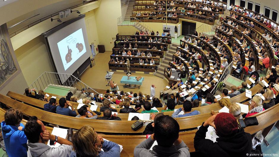 Du học sinh có thể làm gì sau khi tốt nghiệp nước ngoài? - Ảnh 2.