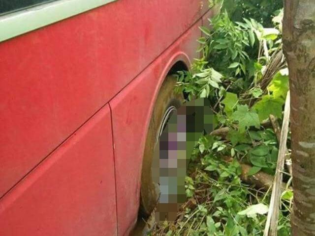 Hai mẹ con tử vong thương tâm sau tai nạn với xe khách - Ảnh 2.