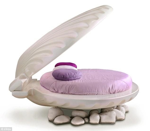 Không biến thành nàng tiên cá được thì mua giường vỏ sò sang chảnh cũng tạm được - Ảnh 3.
