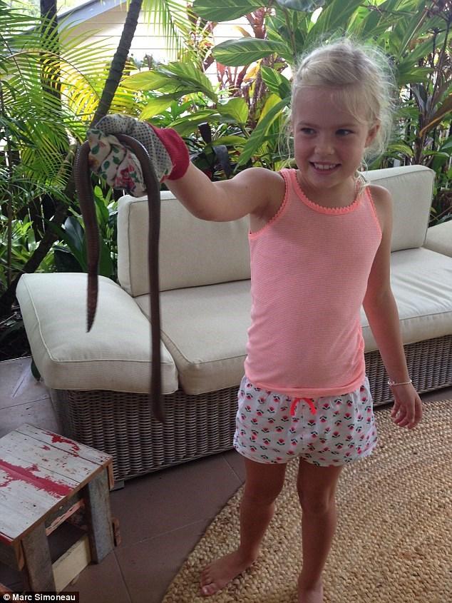Mưa lớn ở Úc làm lộ diện loài giun đất khổng lồ ai xem qua cũng ngỡ là rắn - Ảnh 4.