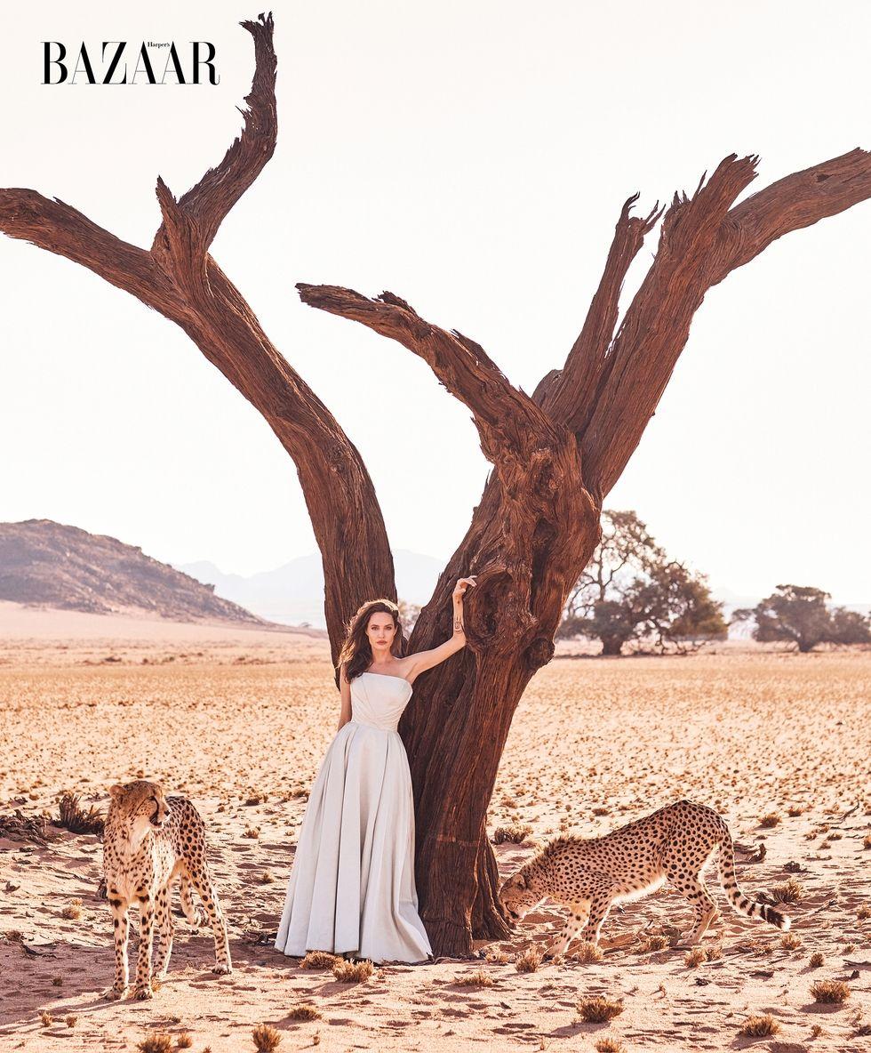Angelina Jolie chứng minh đẳng cấp huyền thoại nhan sắc thế kỷ 21 với bộ ảnh đẹp say lòng người - Ảnh 5.