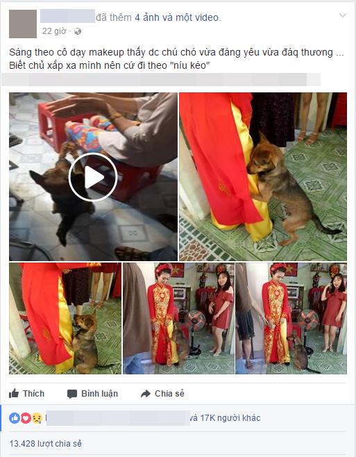 Xúc động hình ảnh chú chó quấn chân, không muốn rời xa trong ngày cô chủ đi lấy chồng - Ảnh 2.