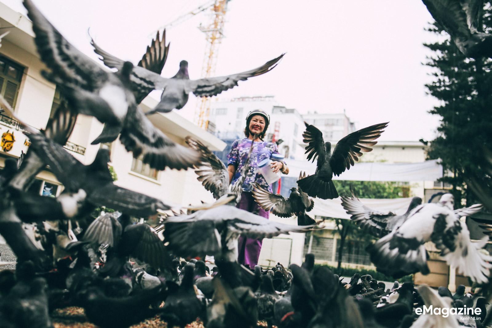 Những người Sài Gòn khùng nuôi chim trời thú hoang - Ảnh 11.