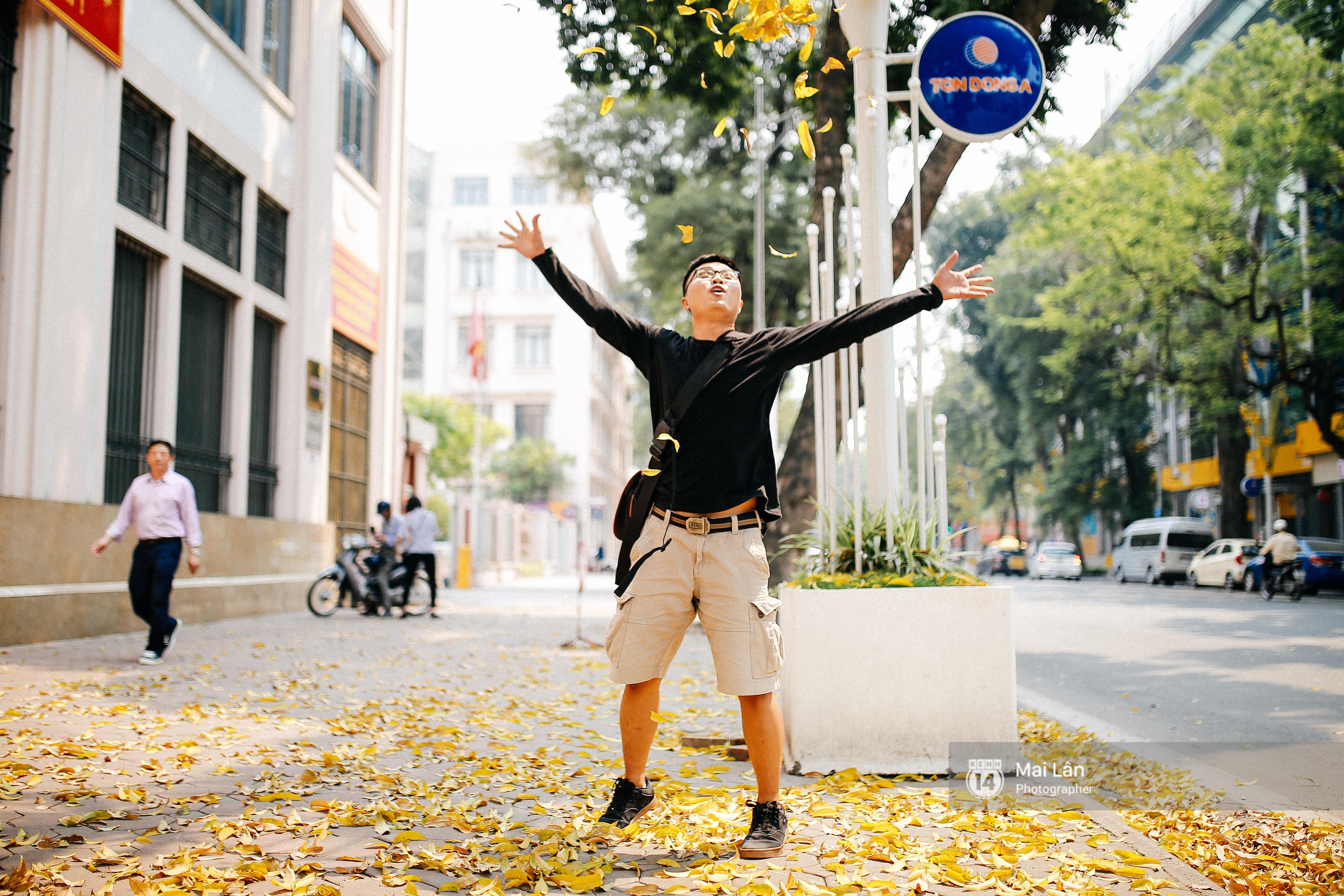 Những ngày Hà Nội rất nóng, nhưng lòng dịu lại vì cảnh lá rụng đẹp như mùa thu thứ 2 - Ảnh 11.