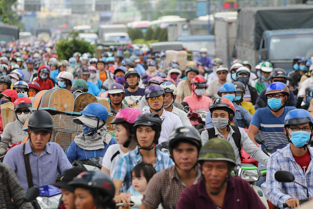 Chính thức xóa sổ 50 ki-ốt gần sân bay Tân Sơn Nhất, hàng trăm con chó mèo, thỏ con... không biết sẽ về đâu - Ảnh 1.