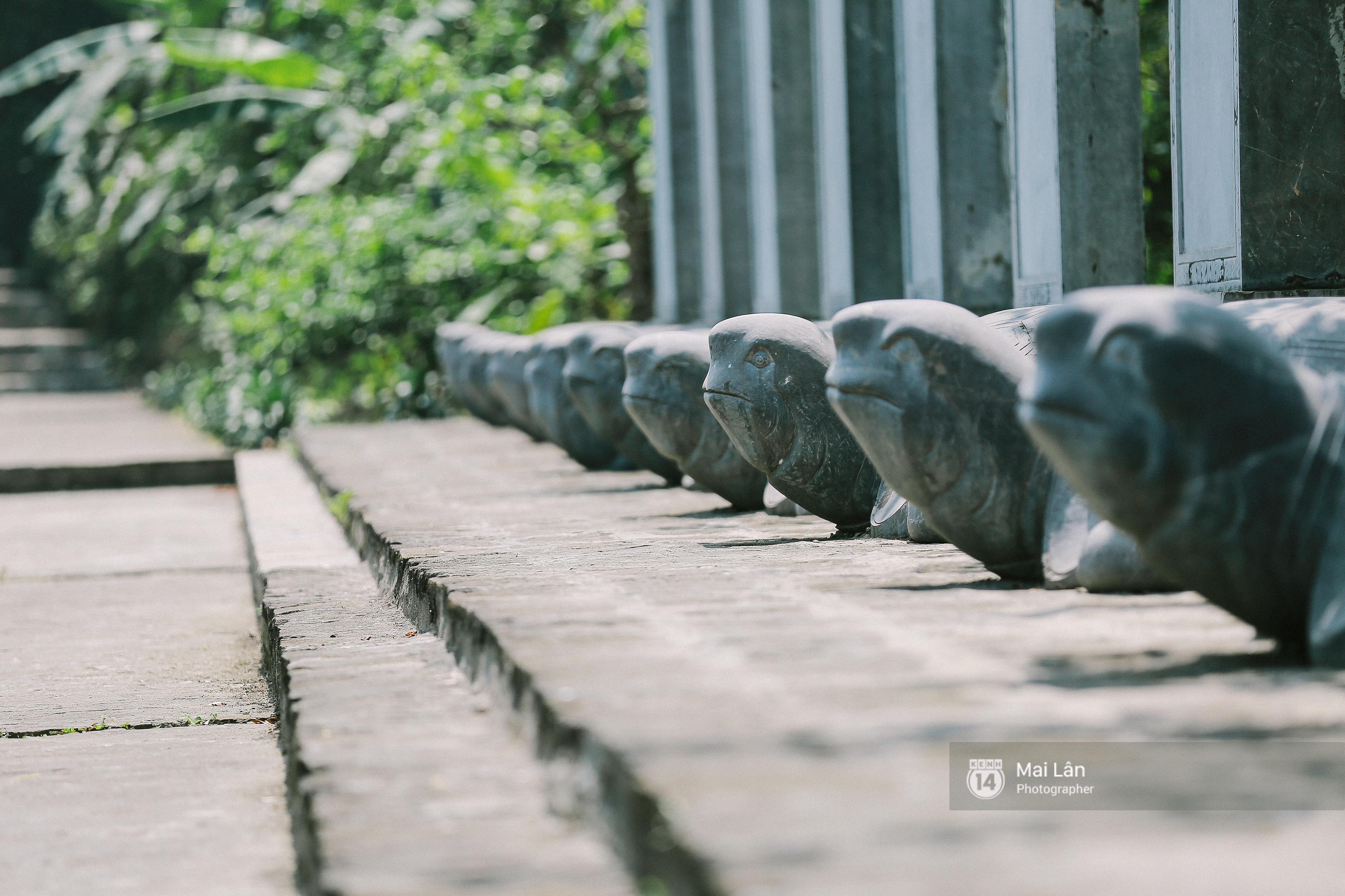 Cuối cùng cũng phục dựng xong, giờ tới Ninh Bình nhất định phải ghé làng thổ dân trong phim Kong! - Ảnh 7.