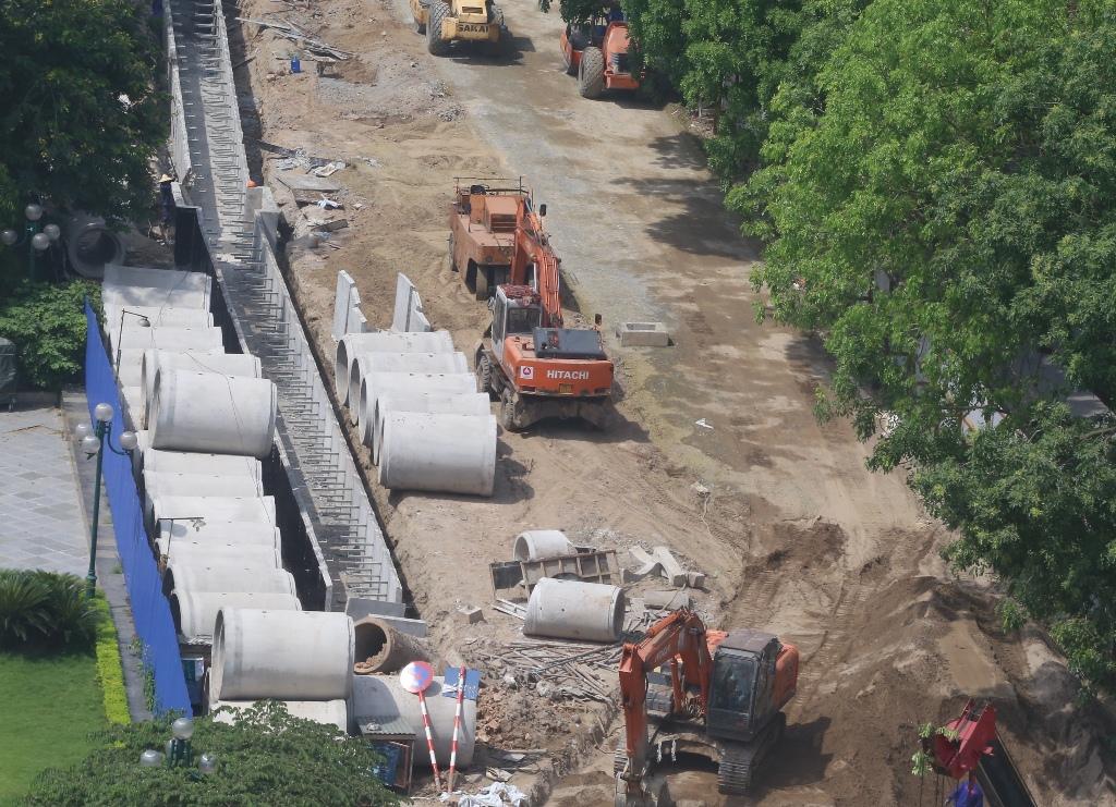 Hà Nội: Nhìn lại 1.300 cây xanh trên đường Phạm Văn Đồng sẽ bị chặt hạ trong 3 tháng tới - Ảnh 3.