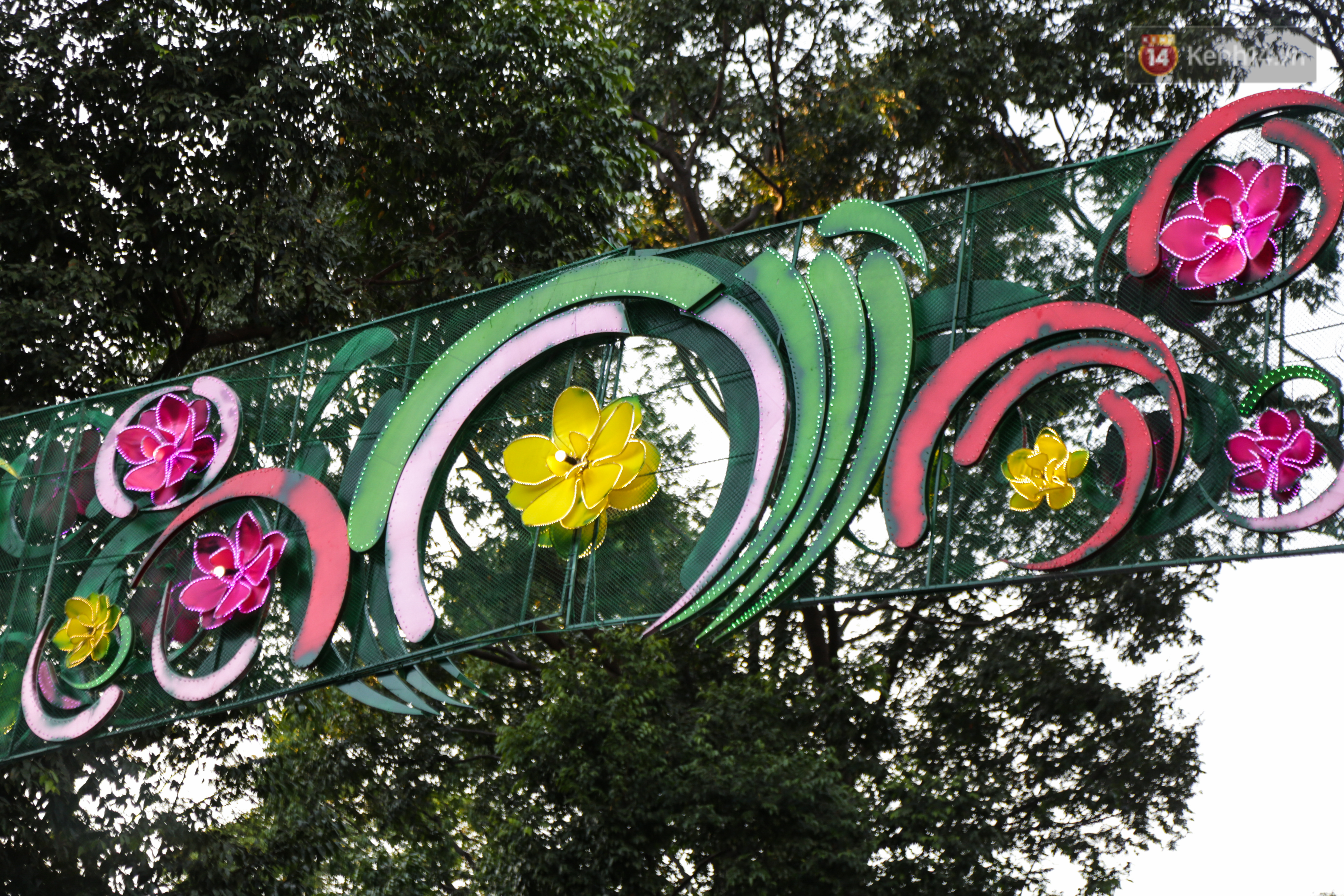 Đèn trang trí Tết trên đường Phạm Ngọc Thạch được chỉnh sửa sau khi người dân chê xấu - Ảnh 10.