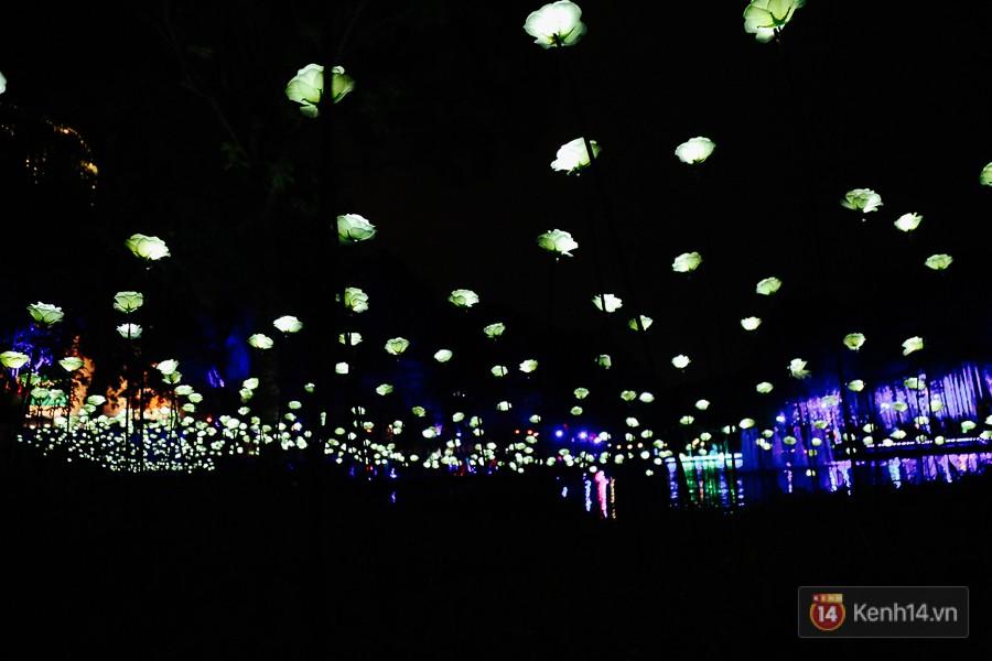 Hàng trăm bạn trẻ đổ xô về khu vườn ánh sáng lung linh độc nhất Sài Gòn giữa tiết trời se lạnh - Ảnh 14.