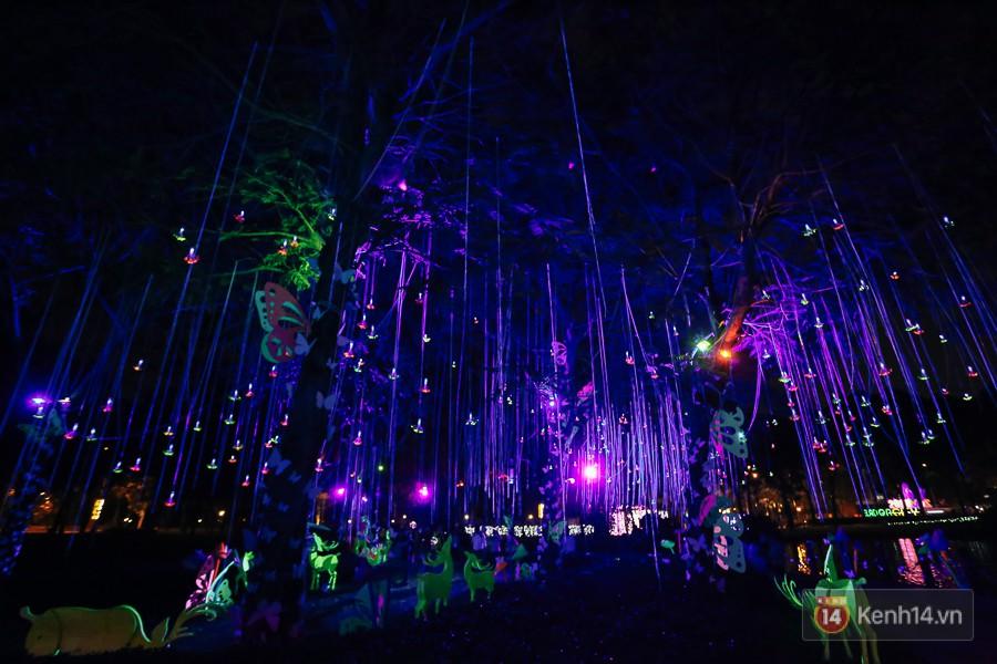 Hàng trăm bạn trẻ đổ xô về khu vườn ánh sáng lung linh độc nhất Sài Gòn giữa tiết trời se lạnh - Ảnh 11.