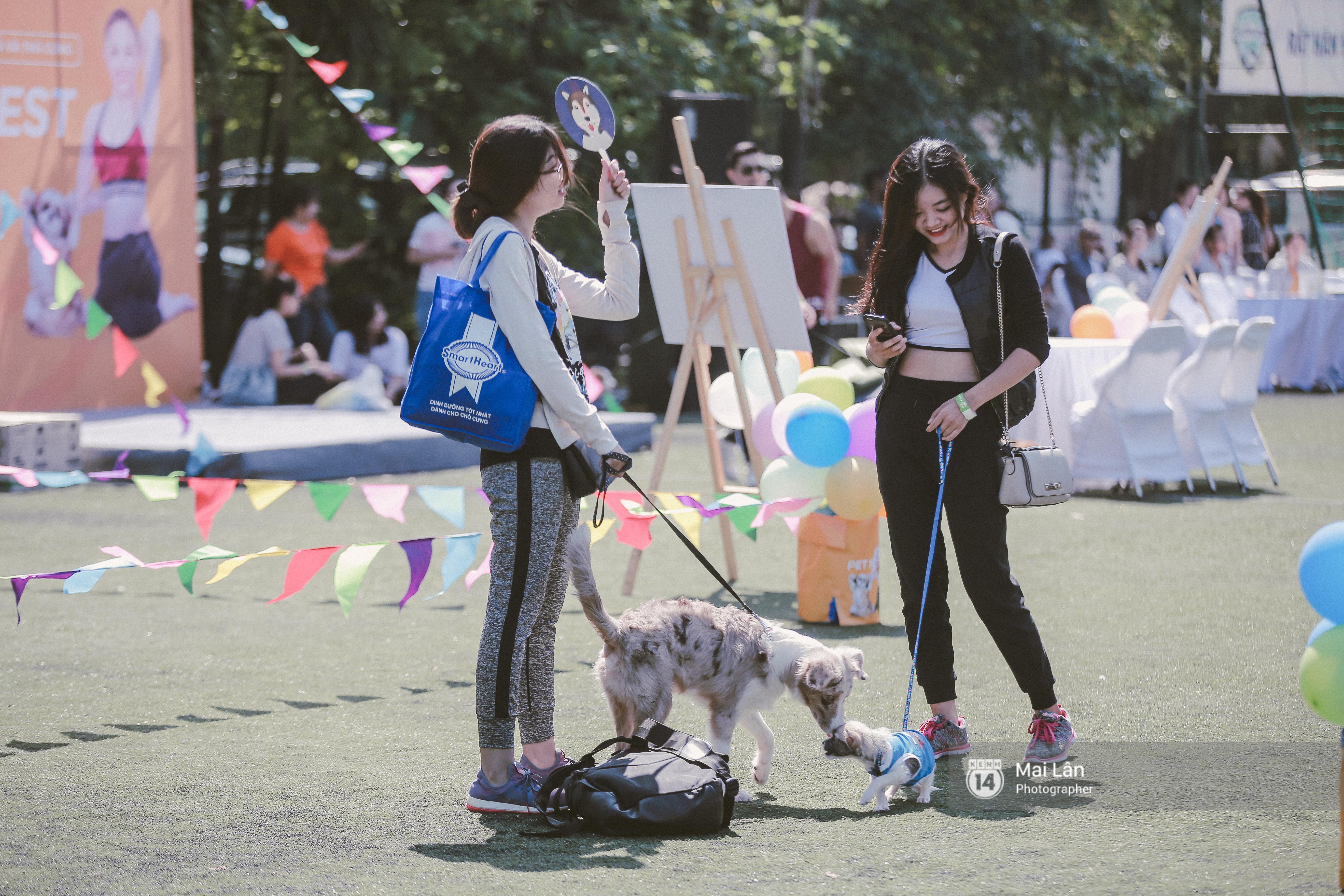 Lễ hội thể thao dành cho chủ và thú cưng độc đáo, đáng yêu nhất Hà Nội! - Ảnh 11.