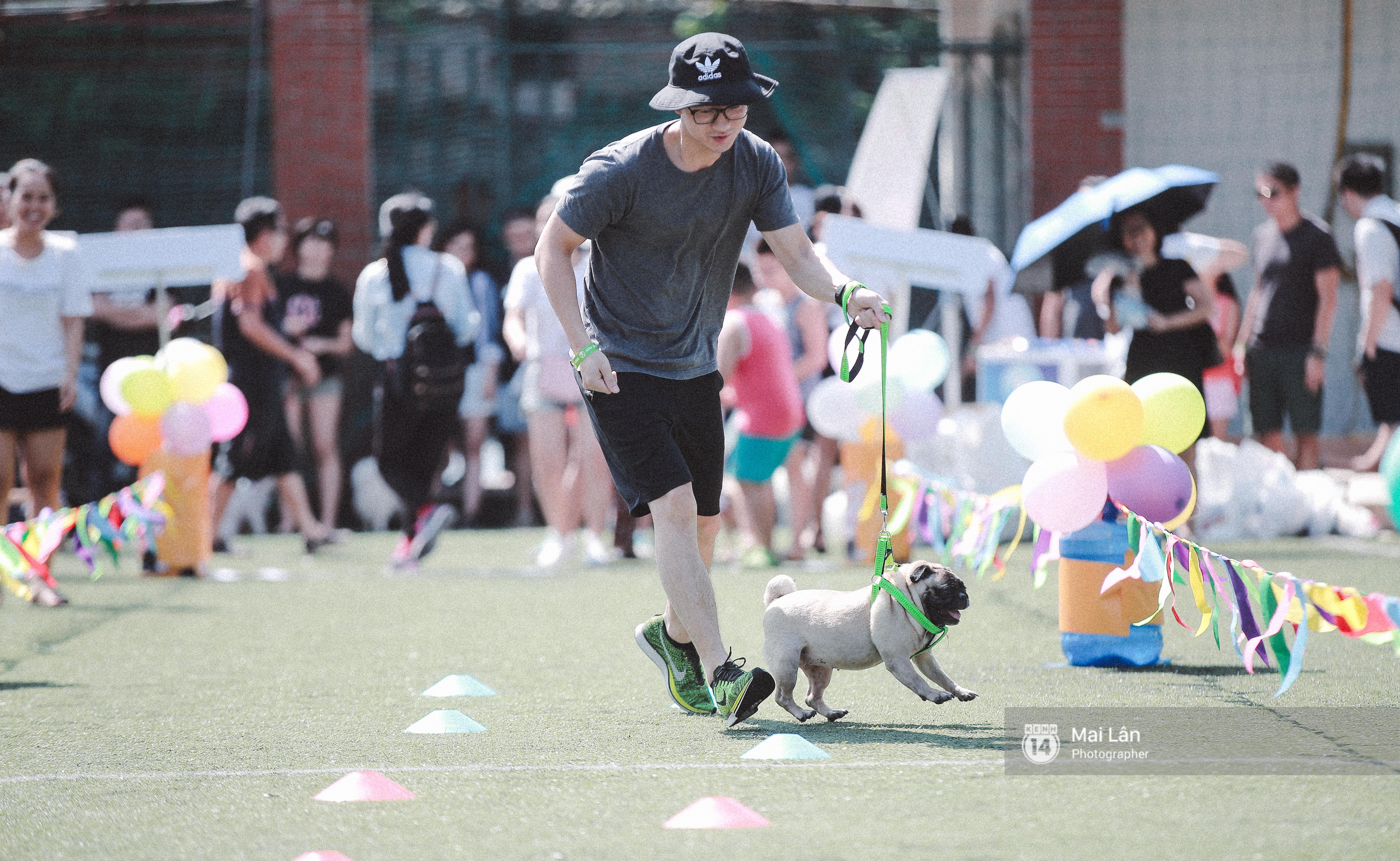 Lễ hội thể thao dành cho chủ và thú cưng độc đáo, đáng yêu nhất Hà Nội! - Ảnh 8.