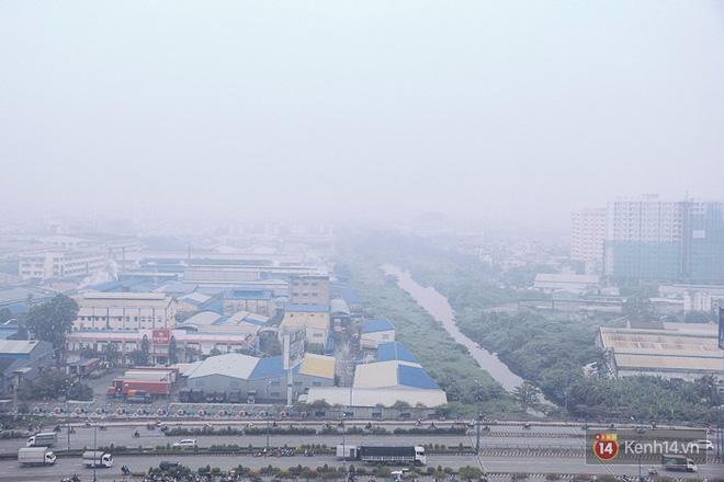 Sương mù dày đặc như Đà Lạt bao phủ khắp Sài Gòn từ sáng đến trưa - Ảnh 3.