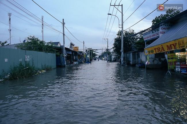 Clip, ảnh: Triều cường đạt đỉnh ở Sài Gòn, trẻ em thích thú bơi lội khi đường biến thành sông - Ảnh 5.