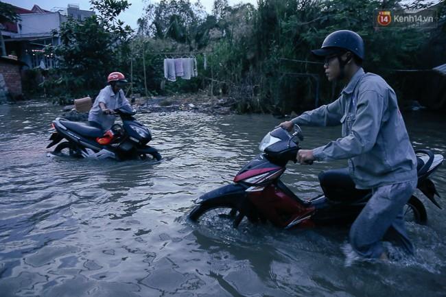 Clip, ảnh: Triều cường đạt đỉnh ở Sài Gòn, trẻ em thích thú bơi lội khi đường biến thành sông - Ảnh 9.