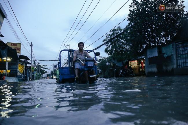 Clip, ảnh: Triều cường đạt đỉnh ở Sài Gòn, trẻ em thích thú bơi lội khi đường biến thành sông - Ảnh 12.