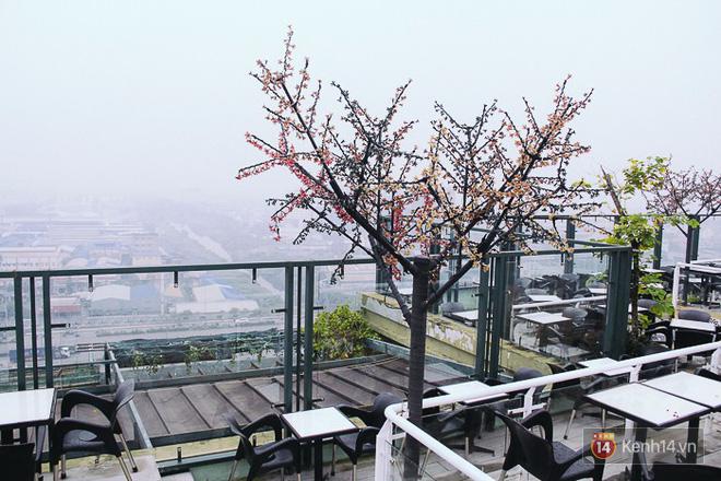 Sương mù dày đặc như Đà Lạt bao phủ khắp Sài Gòn từ sáng đến trưa - Ảnh 7.