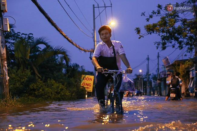 Clip, ảnh: Triều cường đạt đỉnh ở Sài Gòn, trẻ em thích thú bơi lội khi đường biến thành sông - Ảnh 15.