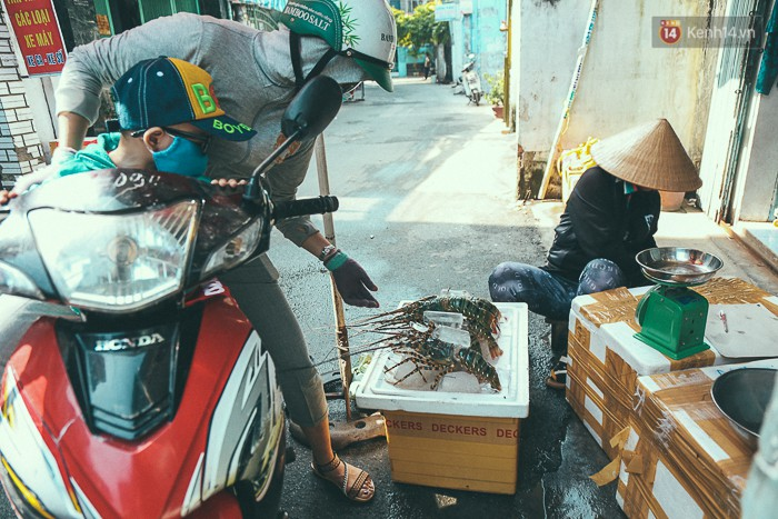 Mang tôm hùm từ vùng tâm bão số 12 lên Sài Gòn, người nuôi nghẹn ngào bán với giá rẻ