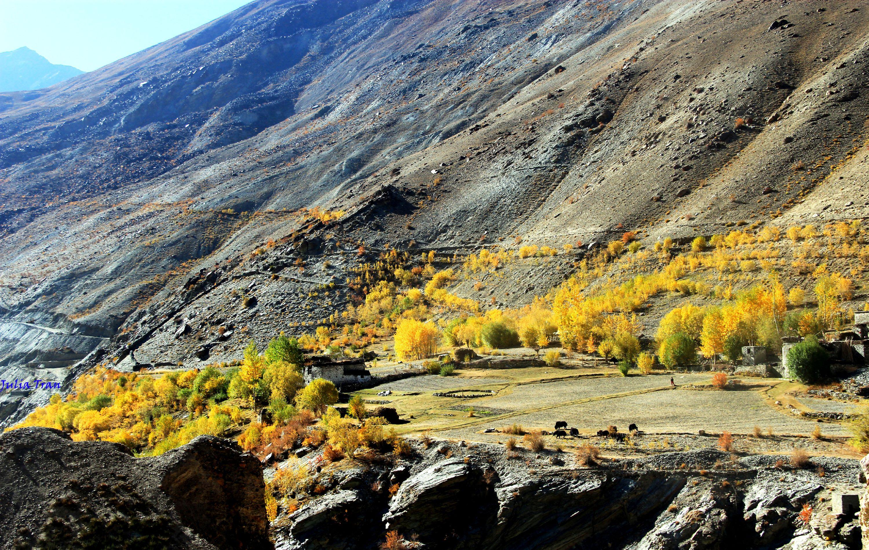 """Mùa thu ở Ladakh: Hành trình trải nghiệm của 1 phụ nữ Việt đến nơi đẹp tựa """"thiên đường ẩn giấu"""" ở Ấn Độ - Ảnh 2."""