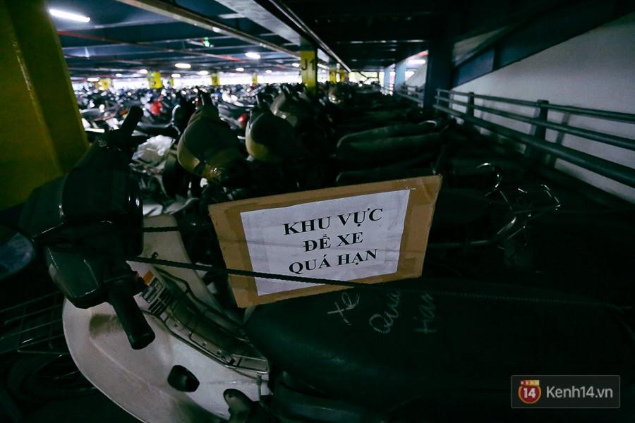 Hàng trăm chiếc xe máy quá hạn vì gửi 2 năm không ai nhận, nhà xe sân bay Tân Sơn Nhất thiệt hại nửa tỉ đồng - Ảnh 2.